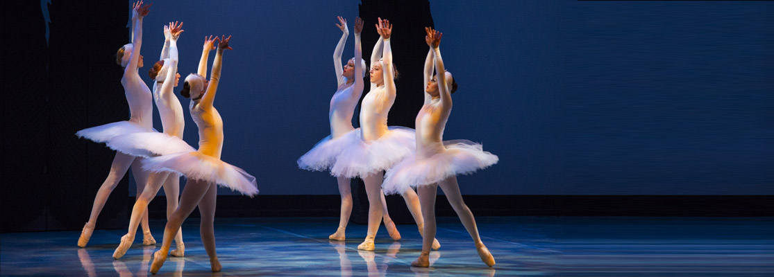 Swan Lake Top Feature